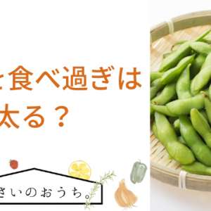 枝豆を食べ過ぎは太る?一日の適量やダイエット方法も