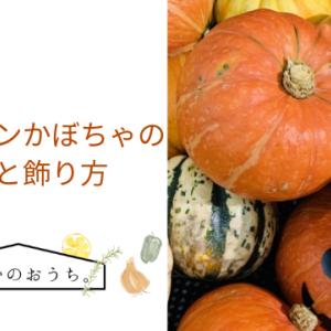 ハロウィンかぼちゃの種類と飾り方