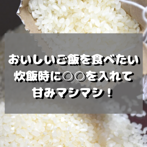 【HSPあるある?】味に敏感?ご飯の味でテンションが変わる。おいしいごはんを炊く裏技