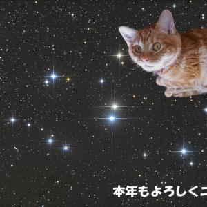 星を光らそうヽ(´ー`)ノ