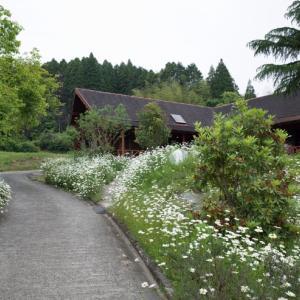 三瀬めぐり(どんぐり村、ミツセファームハーブガーデン、マッちゃん、鶴屋、屋根に花壇のあるお店)