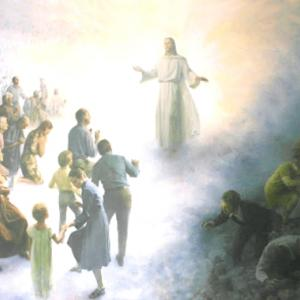 「主よ、主よ」と呼ぶが拒絶される者とは?-マタイ7章21-23節の意味-