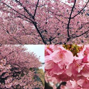 ニッポンの空虚さの象徴三島由紀夫と志村けん