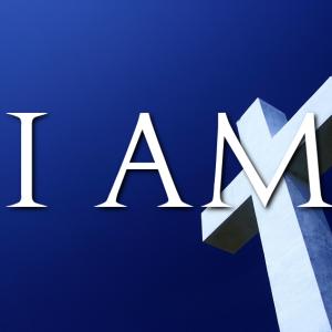 アダムの違反とは何か?