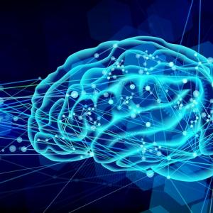 CLIP:Artificial Neurons Can Function Just like Human Brain