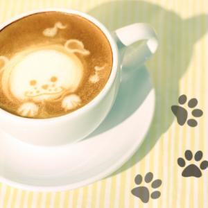 チワワをドッグカフェに連れて行こう!三重県のペット可レストラン