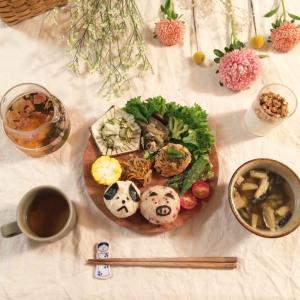 チワワをドッグカフェに連れて行こう!茨城県のペット可レストラン