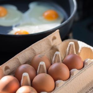 毎日卵を5個以上食べ4年筋トレを続けた結果を公開【実録】