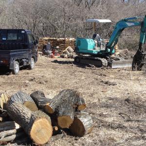 飛行場開拓で出た丸太から薪作り