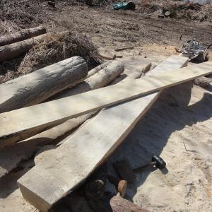 テント小屋用に垂木づくり