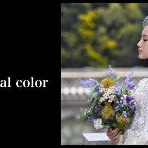 パーソナルカラータイプ別 / ドレスの選び方