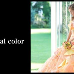 パーソナルカラータイプ別 / ドレスの選び方2
