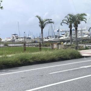 何もかも捨てて沖縄に移住した結果