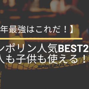 【2021年最強はこれだ!】トランポリン人気BEST2選【大人も子供も使える!】