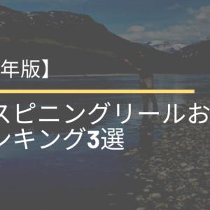 【2021年版】最強スピニングリールおすすめランキング3選【初心者でも使える!】