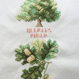 ラナーテさんの植物図鑑(*'∀')