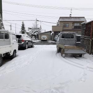 この雪いらない