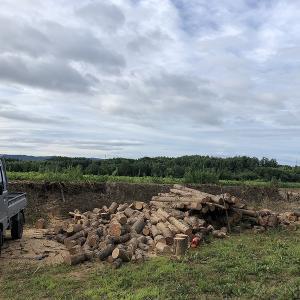 ボート小屋の解体