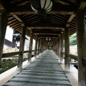 GOTOトラベルキャンペーンが熱い!1泊2000円以下、朝食付き 奈良県の旅♬