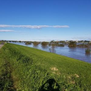 利根川の水かさが危険水域に達した。