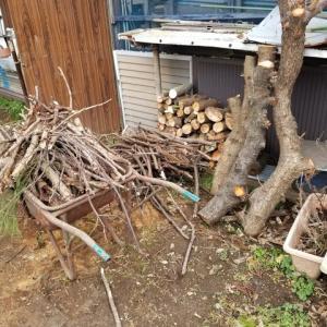 薪作りと焚き木集め。
