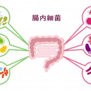 腸内細菌が不足すると慢性病にかかりやすくなる