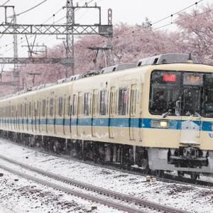 [2020/03/29] 小田急線の座間さくら2020