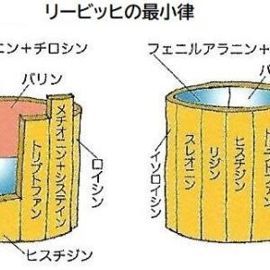「ドベネックの桶」の原理とは?