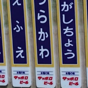 日高本線(苫小牧~様似)記念入場券