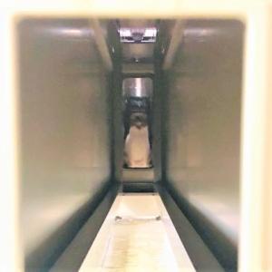 トンネルにある消防用設備等について