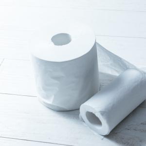 新型肺炎コロナウイルスに関連したデマでトイレットペーパーがない!お尻を何で拭けばいいのか対処法
