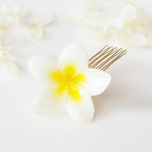 新作 Plumeria Mini for Hair. 本物のお花 ミニプルメリアとパールの髪飾り