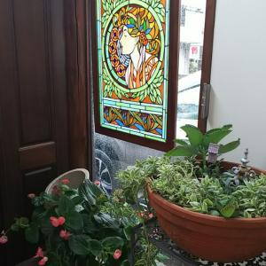 台風の玄関