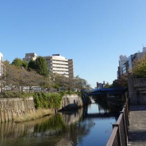 ソニーRX100M7でスナップ散歩 in目黒川&恵比寿&川崎