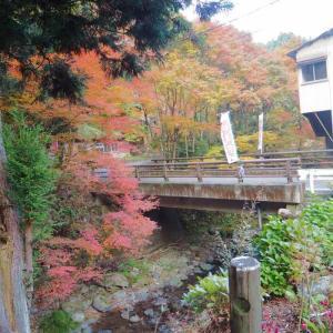 五家荘へ 秋を探しに・・・
