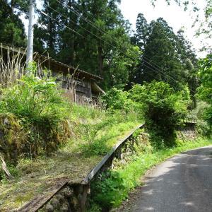 奥深き富山市南部の漫遊【その8】 ~御前山への林道!