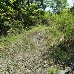 飛越国境 旧利賀村南部の林道漫遊【その2】 ~旧河合村の謎の池へ!