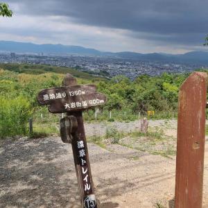 大岩神社 《後編》 【京都市伏見区深草】