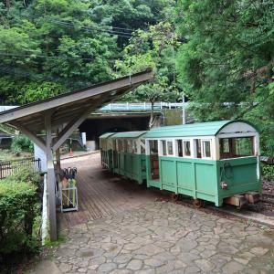 紀和町漫遊2021 《その5》 ~湯ノ口温泉から熊野川へ