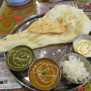 救急外来で診療 ~地元のインド・ネパール料理店へ