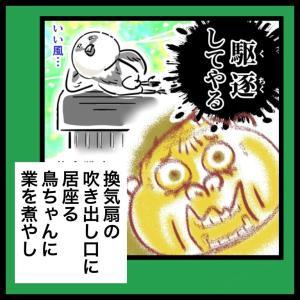 【うっせぇわ②】鳥ちゃん駆逐大作戦 〜鳥ちゃんVS妻編〜