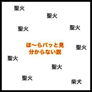 【ガクブル③雑談】視界の真ん中にカラフルな光が!!