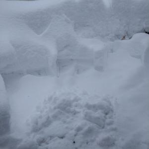 【緊急】東京23区、5センチ積雪の予想