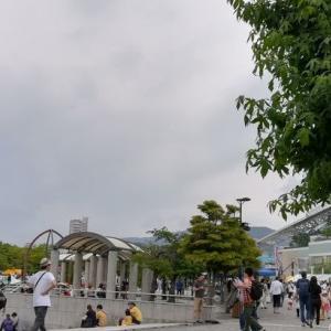 宝塚記念を見に行く