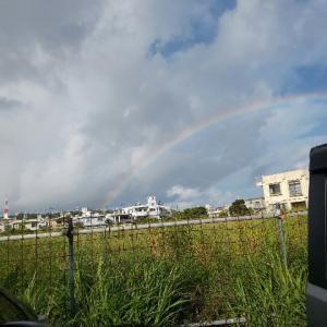 虹🌈がお出迎え❗️