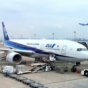 ANAのトクたびマイルが結構使える件 国内最安マイルで飛ぶ