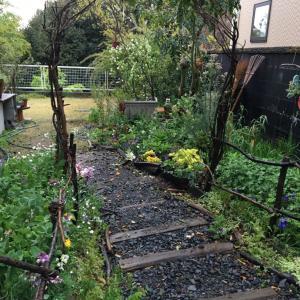 廃材とグルーピングで、草原ガーデンが出来ていた。