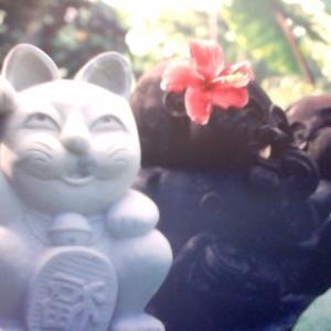 バリ島の神様になった、招き猫。