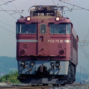 ED75 81[機番シリーズ081]