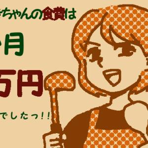 【わたしの食費は1か月1万円】安い食材を腐らせない方法【干し野菜のススメ】